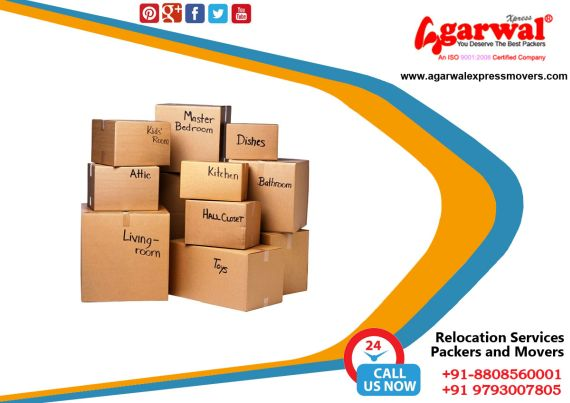 Packing and Moving Solutions in Sitapur