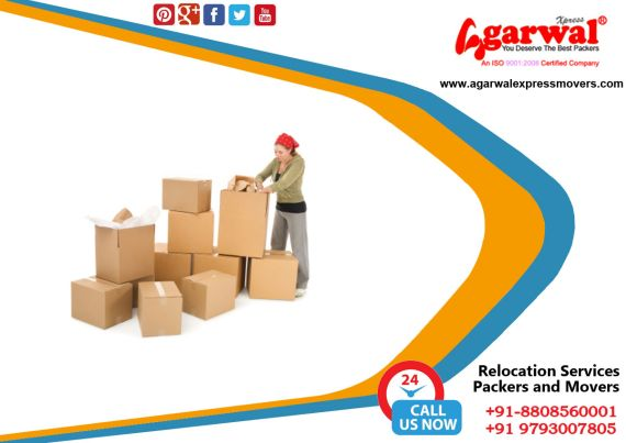 Packing and Moving Solutions